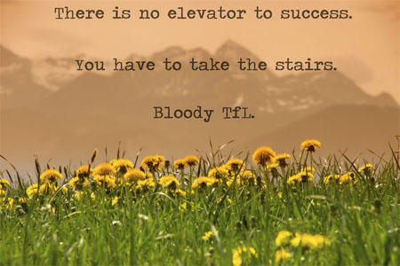 elevator success stairs bloody tfl